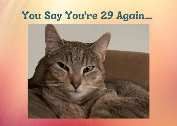 You Say You're 29