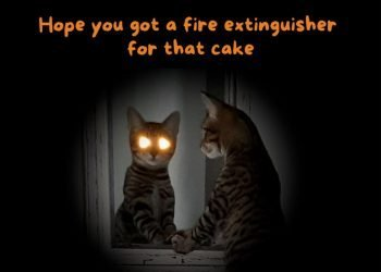 Hope you got a fire extinguisher for that cake