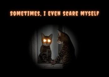 Sometimes I even scare myself